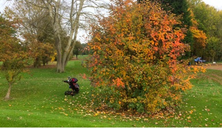 Autumn at Abbotsley